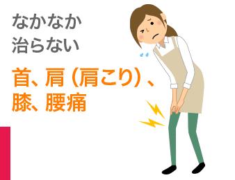 首、肩(肩こり)、膝、腰痛
